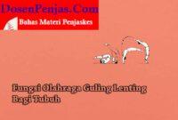 Manfaat Guling Lenting